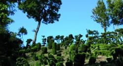 Les jardins fantastiques du Prieuré de Vaubouin – 22 mai