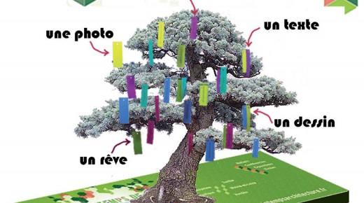 Feuilles d'architectes en cours au parc de Procé